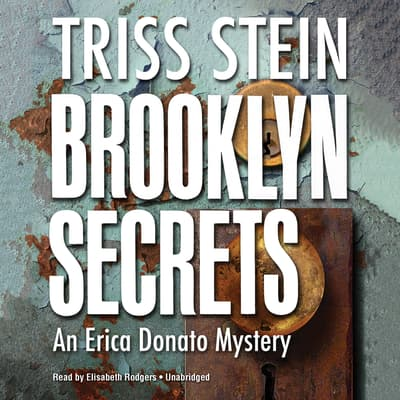 Brooklyn Secrets by Triss Stein audiobook