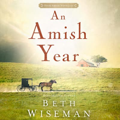 An Amish Year by Beth Wiseman audiobook