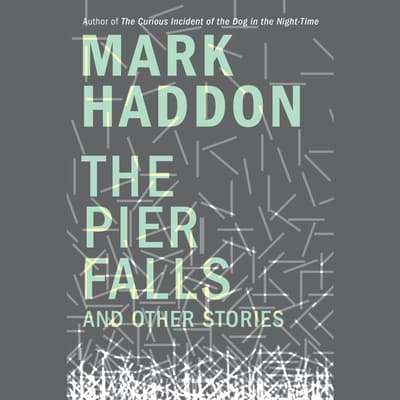 The Pier Falls by Mark Haddon audiobook