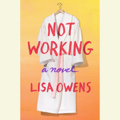 Not Working by Lisa Owens audiobook