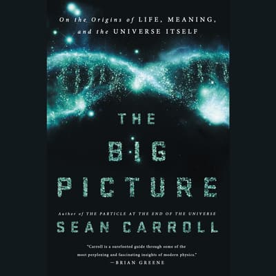 The Big Picture by Sean Carroll audiobook