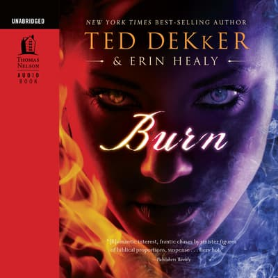 Burn by Ted Dekker audiobook
