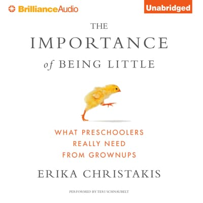 The Importance of Being Little by Erika Christakis audiobook