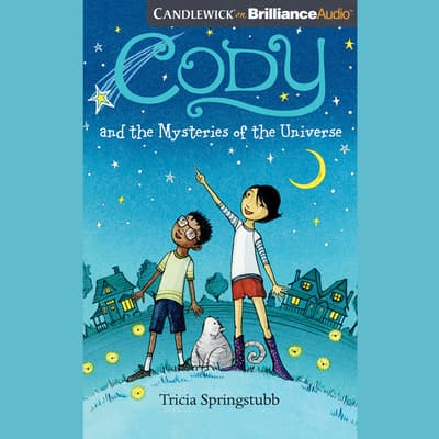 Cody and the Mysteries of the Universe by Tricia Springstubb audiobook