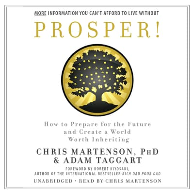 Prosper! by Chris Martenson audiobook