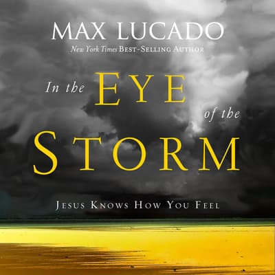 In the Eye of the Storm by Max Lucado audiobook