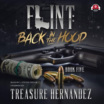 Flint, Book 5 by Treasure Hernandez audiobook