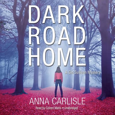 Dark Road Home by Anna  Carlisle audiobook