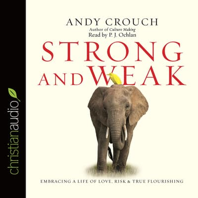Strong and Weak by Andy Crouch audiobook