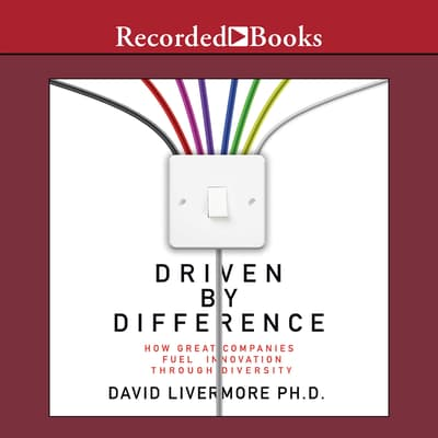 Driven by Difference by David Livermore audiobook