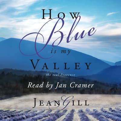 How Blue is My Valley by Jean Gill audiobook
