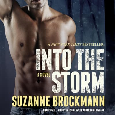 Into the Storm by Suzanne Brockmann audiobook