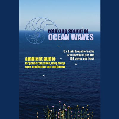Relaxing Sound of Ocean Waves: Ambient Audio for Gentle Relaxation, Meditation, Deep Sleep, Yoga, Spa and Lounge by Greg Cetus audiobook