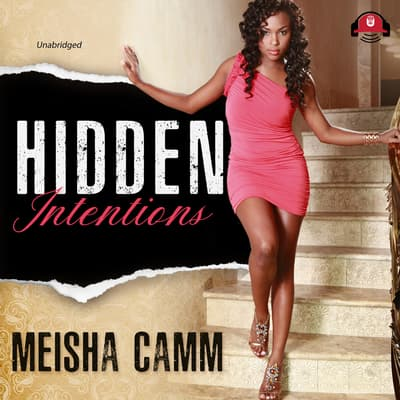 Hidden Intentions by Meisha Camm audiobook