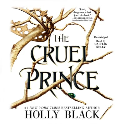 The Cruel Prince by Holly Black audiobook