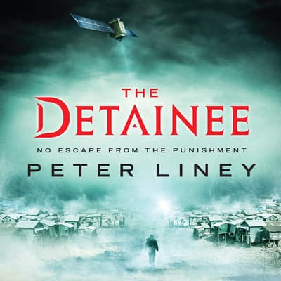 The Detainee by Peter Liney audiobook