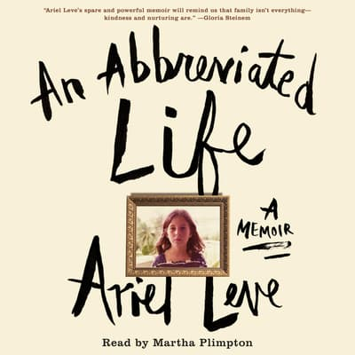 An Abbreviated Life by Ariel Leve audiobook