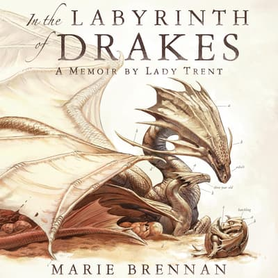 In the Labyrinth of Drakes by Kate Reading audiobook