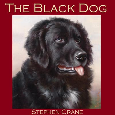 The Black Dog by Stephen Crane audiobook