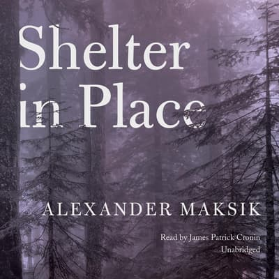 Shelter in Place by Alexander Maksik audiobook