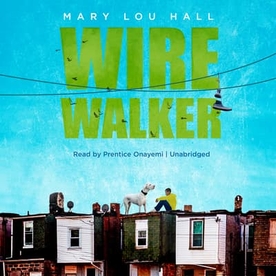 Wirewalker by Mary Lou Hall audiobook