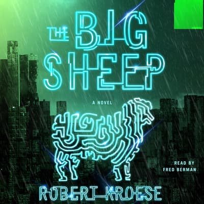 The Big Sheep by Robert Kroese audiobook