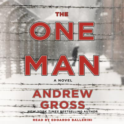 The One Man by Andrew Gross audiobook