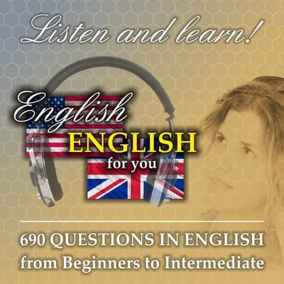 690 questions in English - from Beginners to Intermediate by Richard Ludvik audiobook