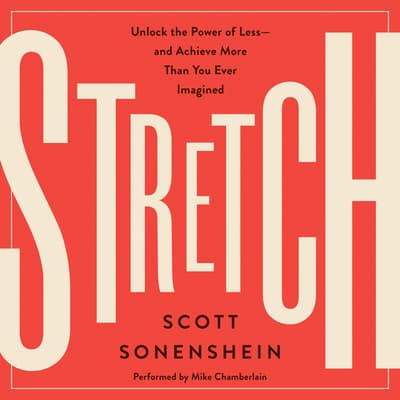 Stretch by Scott Sonenshein audiobook