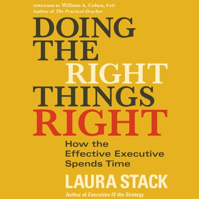 Doing the Right Things Right by Laura Stack audiobook