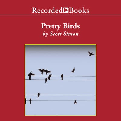 Pretty Birds by Scott Simon audiobook