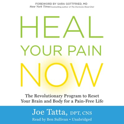 Heal Your Pain Now by Joe Tatta audiobook