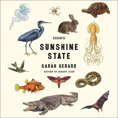 Sunshine State by Sarah Gerard audiobook