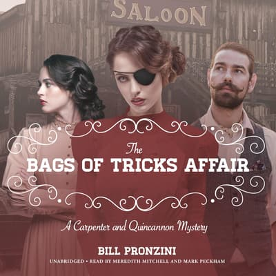 The Bags of Tricks Affair by Bill Pronzini audiobook