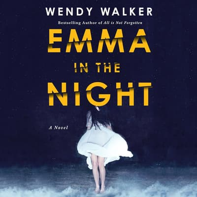 Emma in the Night by Wendy Walker audiobook