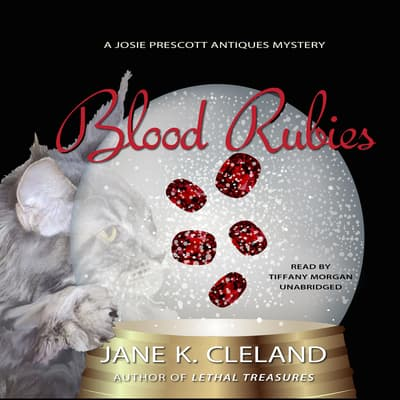 Blood Rubies by Jane K. Cleland audiobook