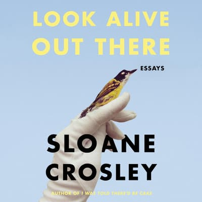 Look Alive Out There by Sloane Crosley audiobook
