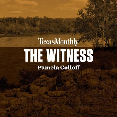The Witness by Pamela Colloff audiobook