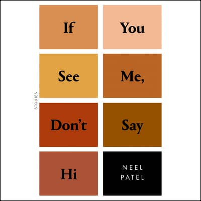 If You See Me, Don't Say Hi by Neel Patel audiobook