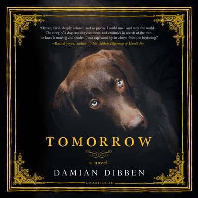 Tomorrow by Damian Dibben audiobook