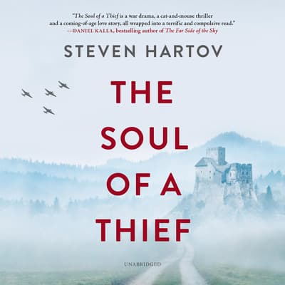 The Soul of a Thief by Steven Hartov audiobook