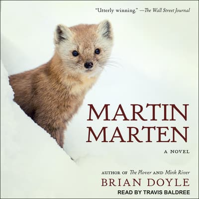 Martin Marten by Brian Doyle audiobook