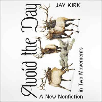 Avoid the Day by Jay Kirk audiobook
