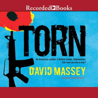 Torn by David Massey audiobook