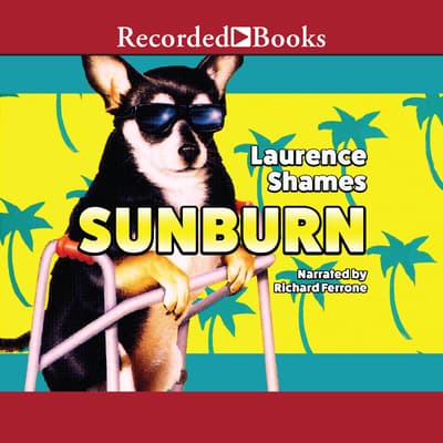 Sunburn by Laurence Shames audiobook