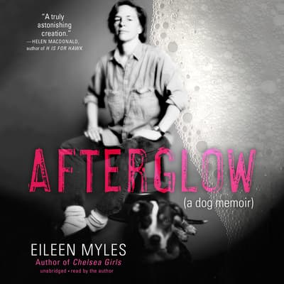 Afterglow by Eileen Myles audiobook