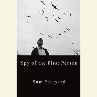 Spy of the First Person by Sam Shepard audiobook