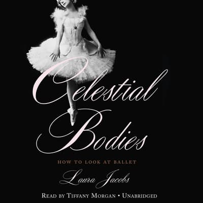 Celestial Bodies by Laura Jacobs audiobook