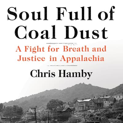 Soul Full of Coal Dust by Chris Hamby audiobook