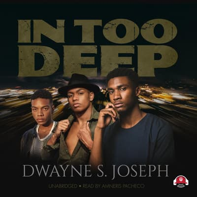 In Too Deep by Dwayne S. Joseph audiobook